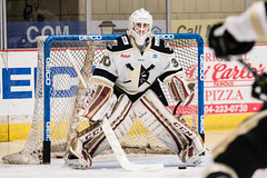 """Nailers_Walleye_1-6-17-11 • <a style=""""font-size:0.8em;"""" href=""""http://www.flickr.com/photos/134016632@N02/31319174704/"""" target=""""_blank"""">View on Flickr</a>"""