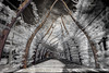 Brisbane South Bank in HDR Infrared (Karl Muller) Tags: hdr highdynamicrange ir infrared brisbane southbankparklands queensland australia summer dark moody vines trees gardens outdoors sky storm blackandwhite monochrome