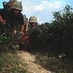 United States' Marines charge through underbrush in DMZ during Operation Hickory thumbnail