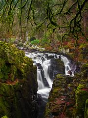 The Hermitage. (Scott Bissett) Tags: landscape dunkeld scotland woodland waterfall river
