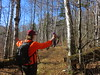 Leah Blocking Things (amyboemig) Tags: ham hike hiking hikeamonth november fall merck farm forest center rupert leah birches