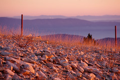 Best Wishes 2017 to All (delphine imbert) Tags: nature coucher soleil montagne vaucluse ventoux