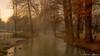 Lost in Time (matteo.sanarico) Tags: winter no time inverno senza tempo colours colori alba dawn sunrise milano milan fog foschia nebbia breeze brina mattina morning