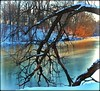 Brrrrr... (dianealdrich - Please read my profile) Tags: brrrrr cold coldday coldweather frozen freezing chill chilly winter ice nature natureconservancy nj newjersey newjerseytnc10 ♥naturelover♥ trees colorfultrees landscape goldenhour sunshine sunlight