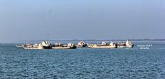 Padma River at Aricha (sajan-164) Tags: padma river boats vessels ripples winds aricha ferryghat bangladesh sajan164 explored