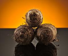 Taro Root (dr_scholz@ymail.com) Tags: colocasiaesculenta taro root tuber hairy potatolike orange reflection food canon5dmkii zeissaposonnart2135 aposonnart2135