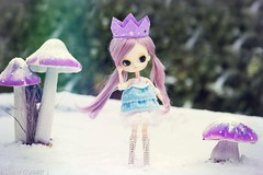 'The Iceprincess' (ChewyRabbit) Tags: pullip dal custom wig rewigged leeke luts purple pastel obitsu obitsued snow ice princess blythe middie outfit stock winter joujou
