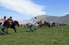 Yushu Horse Racing (oeyvind) Tags: china horse animal tibet amdo kham     yushu qinghai chn   jyekundo gyegu   decoratedanimal