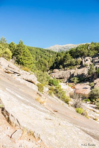 """""""Charca verde"""" en La Pedriza - Sierra de Madrid"""