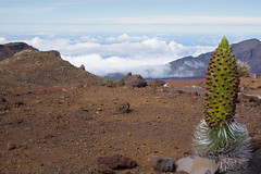An Afternoon On The Mountain (ArneKaiser) Tags: crater haleakala hawaii landscape maui mauicollection clouds cloudscape mountain peak summit weather flickr