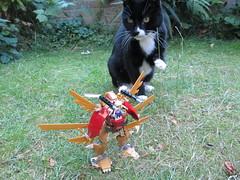 (Foyles In-store MOC) (AyliffeMakit) Tags: friends cat gold wings lego walker mecha foyles mech moc minidoll