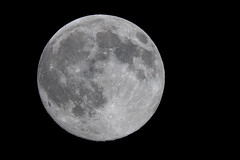 Blue Moon - Full Moon (2015-07-30: 2526) (bechtelsf) Tags: sky nikon fullmoon nightsky phase lunar bluemoon tamron200500mm d810