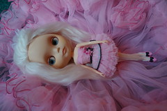 A New Pink Princess Has Come To Live With Me! (Primrose Princess) Tags: pink ballerina blythe takara tutu teafortwo dollydreamland morganortoncustomblythe palepinkalpacareroot
