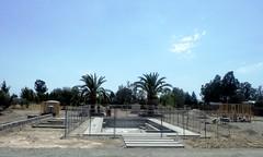 DSCF8737 (jhk&alk) Tags: palmtrees sonomacounty atthecountryhouse unfinishedswimmingpool