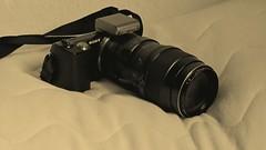 Canon SX220HS (nexmand) Tags: canon denmark sony 135mmf28 saeby nex5 sx230hs sx220hs nexmand oz2mls 5p5m