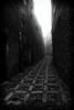 1602315b (Bogdan Szadowski) Tags: erice italy sicily architecture building fog outdoor street streetphoto sicilia