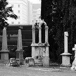 Cemetery by the park thumbnail