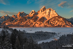 South, Middle, and Grand Teton (kevin-palmer) Tags: grandtetonnationalpark wyoming winter december snow snowy early morning sunrise grandteton teton mountains snakeriver water flowing snakeriveroverlook sunlight gold golden nikond750 tamron2470mmf28 nationalpark