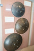 Persian shields (quinet) Tags: 2015 borneo kuching malaysia sarawak schirm bouclier shield