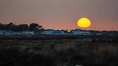 Puesta de sol en la casa del Farero (Miguel Sanchez Arteche) Tags: expo1 marismas puestasdesol sanctipetri