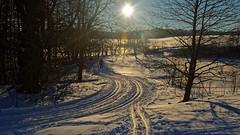 Golden ski running track (Michal Hajek) Tags: d5500 nikon 18140mm czphoto czechrepublic ski snow winter platinumheartaward