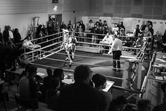 Majorna Rumble 2015, Gothenburg #24 (Mns Thuresson) Tags: gothenburg boxing boxning majornarumble