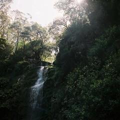 (Filip.G) Tags: 120 film nature australia analogue hasselblad500cm kodakportra400 erskinefalls planar80mmf28t