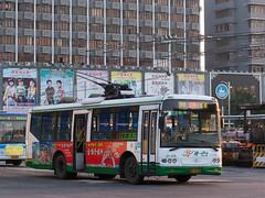 夕阳·电车/Sunset Trolleybus (KAMEERU) Tags: guangzhou bus public transportation trolleybus swb5105gp1