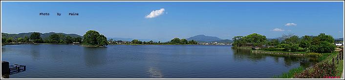和歌山大池遊園-平池綠地公園 (36).JPG