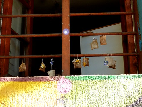 Sachets de thé?!? Santiago, Chili