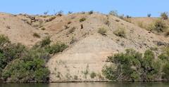 IMG_0141.jpg (DrPKHouse) Tags: arizona unitedstates loco lakehavasucity