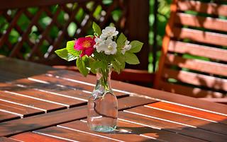 Bouquet. Flowers in vase.
