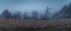 enjoying the shortest days of the year (Carlitos - Thank you all so much!!!) Tags: nachmittag nebelstimmung inversionswetter kälte raureif weis whitepaisajeblanco niebla nubes clouds panorama stativ wandern am gmundnerberg