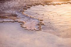 Geyser's Edge (shutterdoula) Tags: yellowstone uppergeyserbasin
