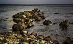 die alte Buhne (wolfi-rabe) Tags: ostsee strand buhne seetank steine
