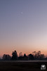 Luna e l'altra (andrea.prave) Tags: ticino parcodelticino naviglio castellettodicuggiono cuggiono italy italia lombardia lombardy campagnamilanese countryside campagna tramonto sunset atardecer solnedgång solnedgang 夕焼け غروب 日落 שקיעת שמש coucherdusoleil ηλιοβασίλεμα zonsondergang pôrdosol закат puestadelsol sonnenuntergang nebbia scighera foggy campi woods bosco mooon luna