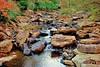 glade creek wv (d and d 2) Tags: nikon d80 wlpg viewnx gimp284 hank