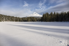 Frozen Trillium (Joshua Johnston Photography) Tags: oregon pacificnorthwest pnw joshuajohnston canon6d winter landscapephotography snow mthood trilliumlake