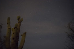 The Big Dipper over a Saguaro (coderjay) Tags: bigdipper constellation longexposure nikon d3400 break astrophotography