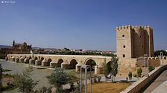 DSC01610-Roman Bridge of Córdoba-El Puente Romano (dreptacz) Tags: cordoba most rzeka zabytek architektura krajobraz slt sony lustrzanka hiszpania