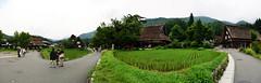 Shirakawago (Juratone) Tags: field japan rice paddy