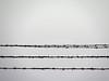 Pass with care (sandra_laranja) Tags: bw wire barbedwire minimalism simple arame farpado lessismore