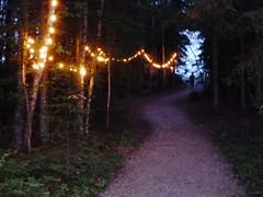 illuminated trail (lgoub) Tags: canada nationalpark saskatchewan princealbert waskesiu northerncanada mapleland princealbertpark waskesiulake