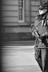 Security Guard at The Birmingham Palace, London - England (Bob8!!!) Tags: uk inglaterra england bw london blackwhite birmingham nikon europa europe gun guard machine police security pb palace queen fogo officer policia palácio guarda policial segurança reino unido firearm arma pretobranco rainha metralhadora d5200