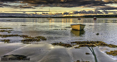 Evening light (C.M_Photography) Tags: ireland seaweed beach water night evening bay boat sand sailing rope sail rowing mast friary donegal rowingboat ards sunaet ardsfriary
