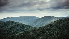 On the top (Davide Bon) Tags: trees italy rain 35mm nikon friuli 35mm18 d7100 taipana vsco nikond7100 vscofilm