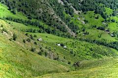 Bordes de Folguero 2 (Xevi V) Tags: catalonia catalunya pyrenees pyrnes pirineos pirineus paisatge prats valldecards pirineucatal parcnaturaldelaltpirineu boldssobir bordesdefolguero plausdebolds