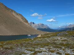 Bow Peak summit scramble - One of the Crowfoot Pass tarns (benlarhome) Tags: canada trekking trek nationalpark hiking hike glacier alberta banff marmot lakelouise scramble laufen scrambling icefieldsparkway bowlake highway93 bowpeak