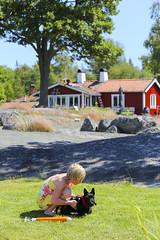 Svartlöga 2016 (Anders Sellin) Tags: 2016 skärgård svartlöga sverige sweden archipelago baltic sea sommar stockholm summer östersjön hund dog friends