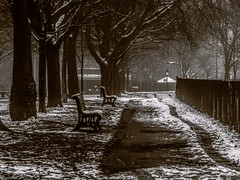 jour de brouillard - 4 (photosgabrielle) Tags: photosgabrielle fog urban city ville montreal snow neige
